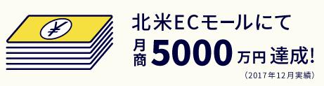 北米ECモールにて月商5000万円達成!(2017年12月実績)